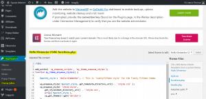 insert scripts in WordPress head or body